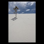 White Sands NP #3