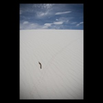 White Sands NP #2