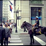 NYPD by horse